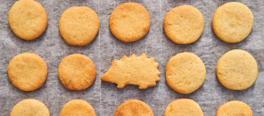 いますぐ作れる、シンプルクッキー